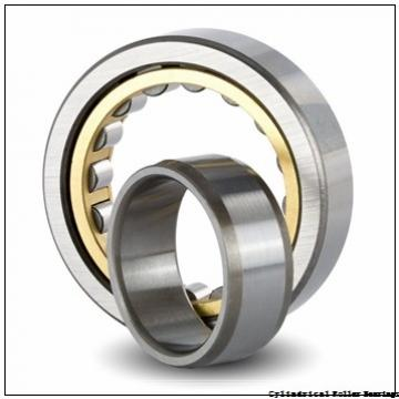 1.772 Inch | 45 Millimeter x 2.953 Inch | 75 Millimeter x 1.575 Inch | 40 Millimeter  INA SL045009  Cylindrical Roller Bearings