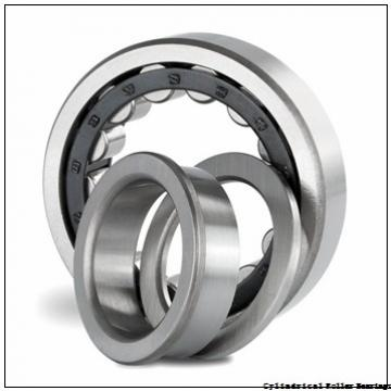 4.724 Inch | 120 Millimeter x 6.598 Inch | 167.58 Millimeter x 3.15 Inch | 80 Millimeter  INA RSL185024  Cylindrical Roller Bearings
